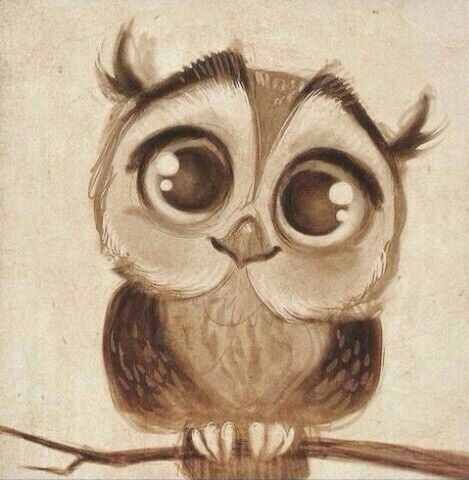 Drawing Cute Art Owl Image 4223060 By Rayman On