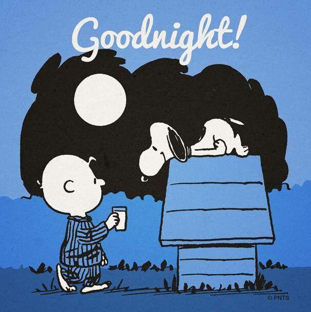 Buenas Noches Snoopy Buenas Noches Con Snoopy Snoopy Charlie Brown Y Snoopy