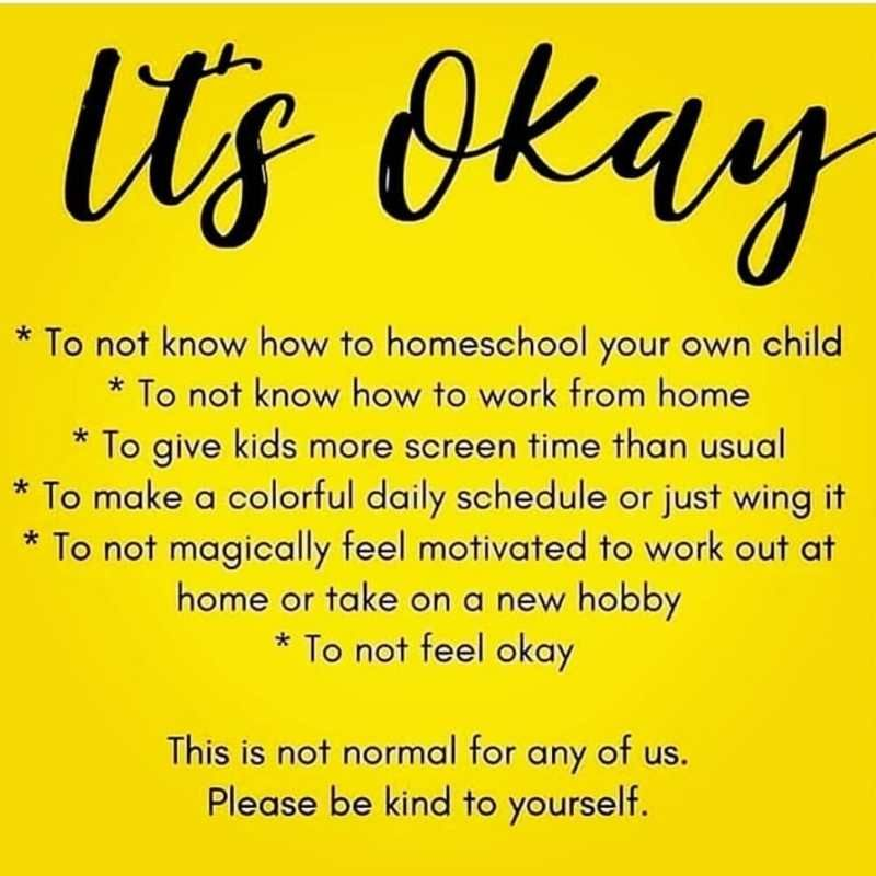 25 Funny Homeschool Memes 2020 Remote Learning Laughs Homeschool Memes Its Okay Homeschool