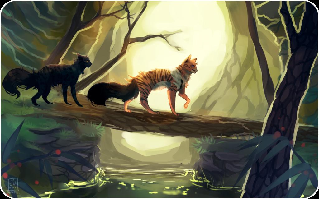 красивые картинки коты воители с природой расстояние это расстояние