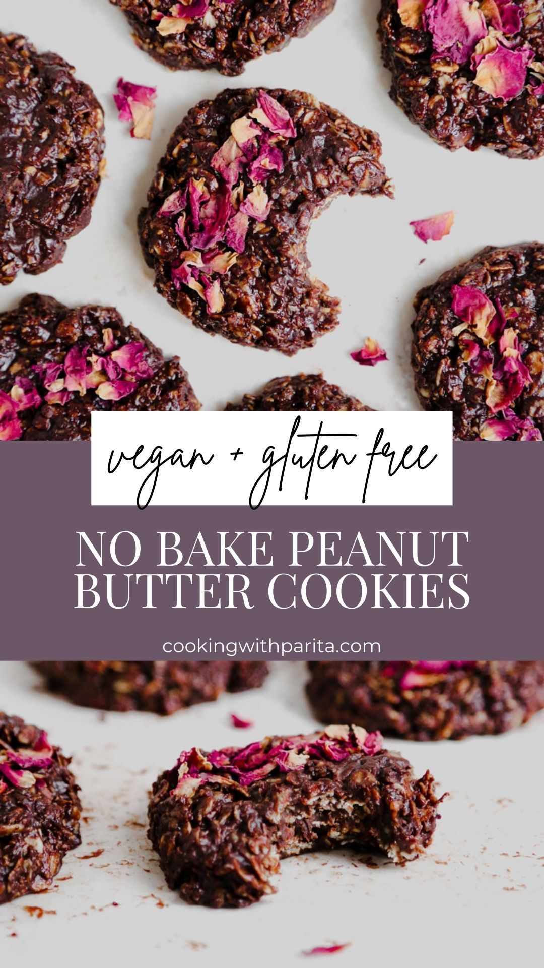 Chocolate Peanut Butter No Bake Cookies  - Vegan V