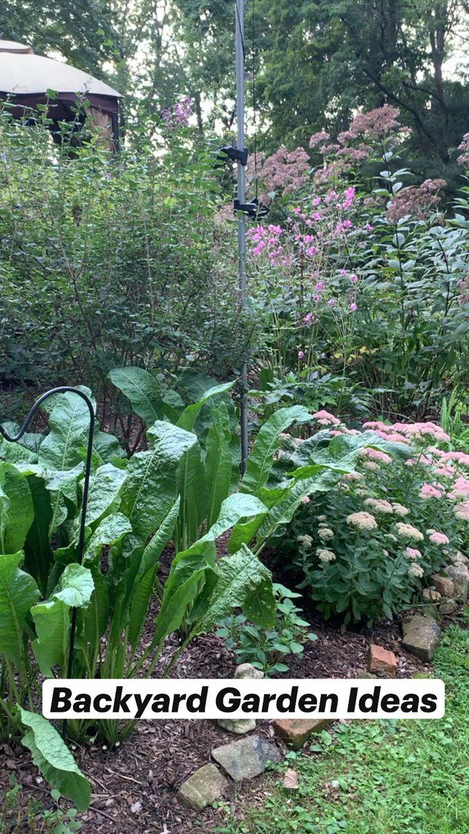 Backyard Garden Ideas Pinterest Backyard garden how to plant