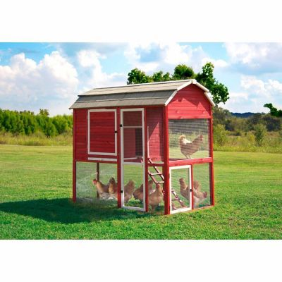 Precision Walk In Red Barn Chicken Coop New Holds Up To 8 Chickens Side Access Door And Pull Out Building A Chicken Coop Chicken Coop Small Chicken Coops