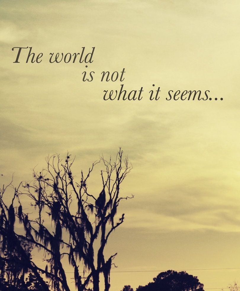 Wonder Quotes About Life The World Is Not What It Seems Dengan