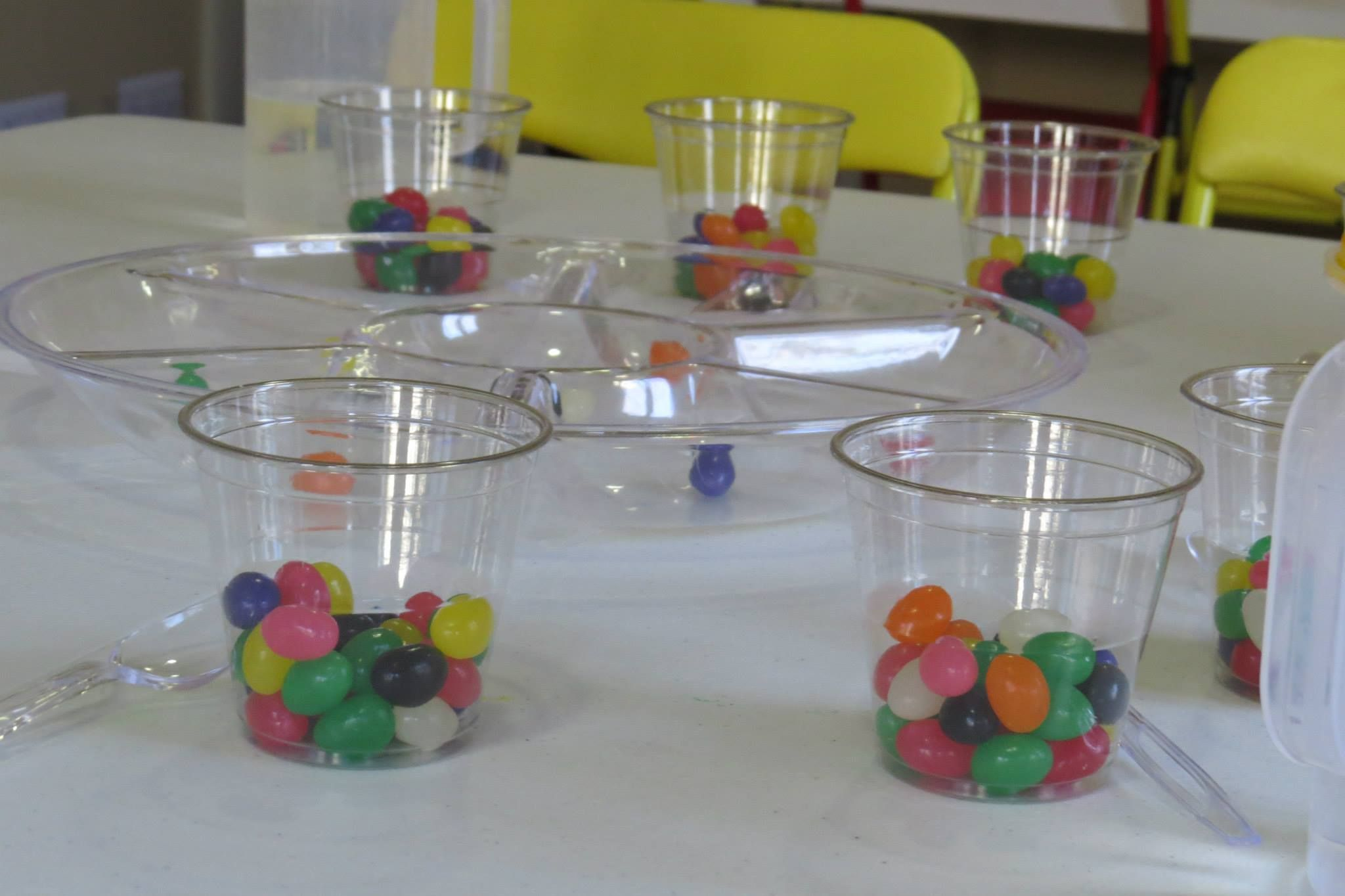 Bright And Colorful Jelly Bean Science