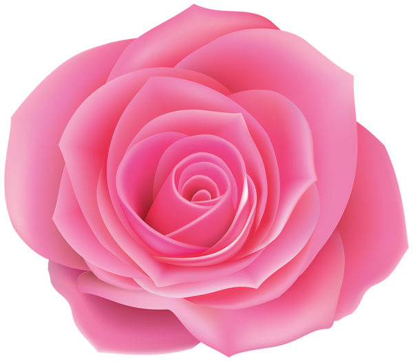 Rose Pink Clip Art Image Beautiful Flowers Images Pink Roses Flower Clipart