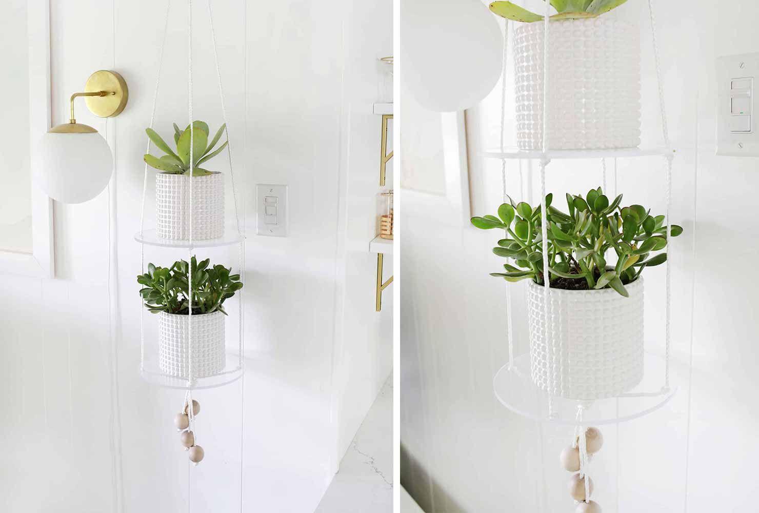 65 ingenious indoor plant decor ideas  shutterfly in 2020