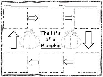 Life Cycle Of A Pumpkin Worksheet Free Worksheets Library ...