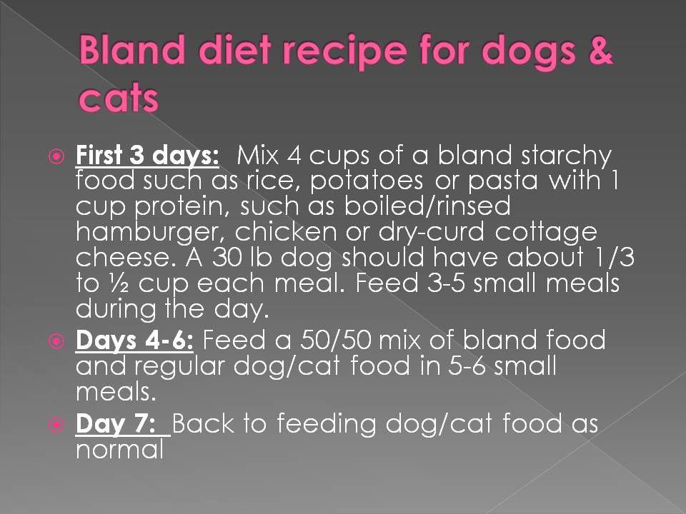 Soft Foods Diet