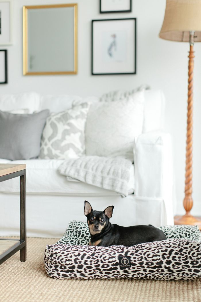 Harry Barker Safari leopard print dog bed via Danielle Moss. #interiordesign #luxury #pet #blackandwhite