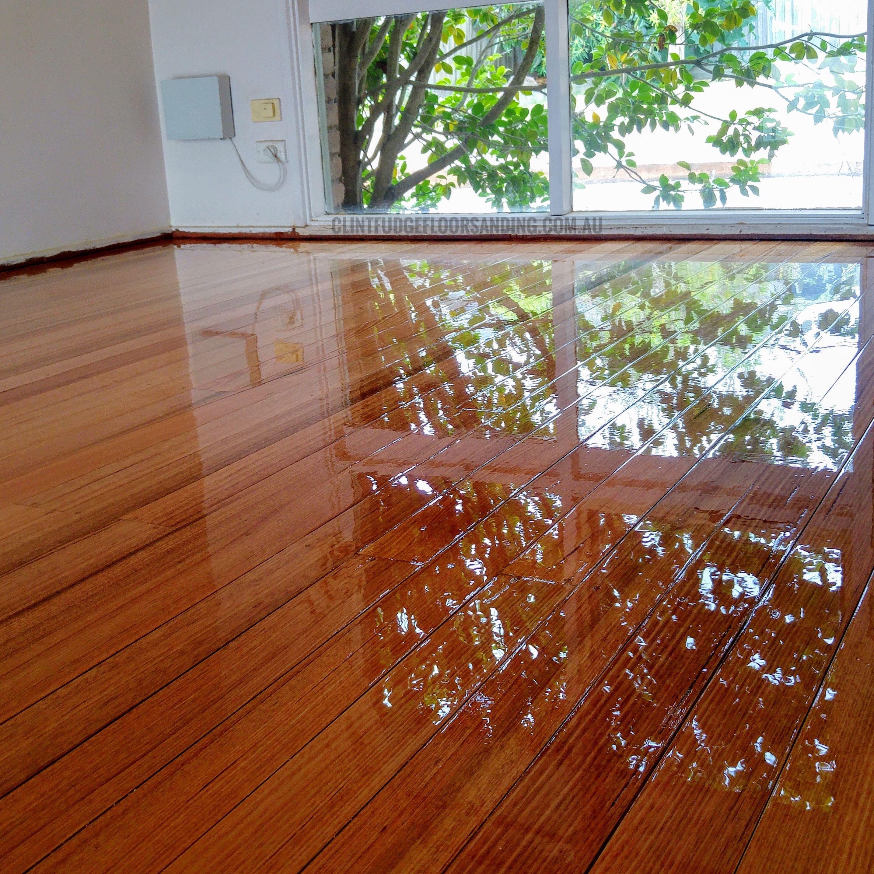 Tasmanian Oak Finished In The Finest High Gloss Polyurethane Fudgeflat Assoalho De Madeira Casa E Lar Porcelanato