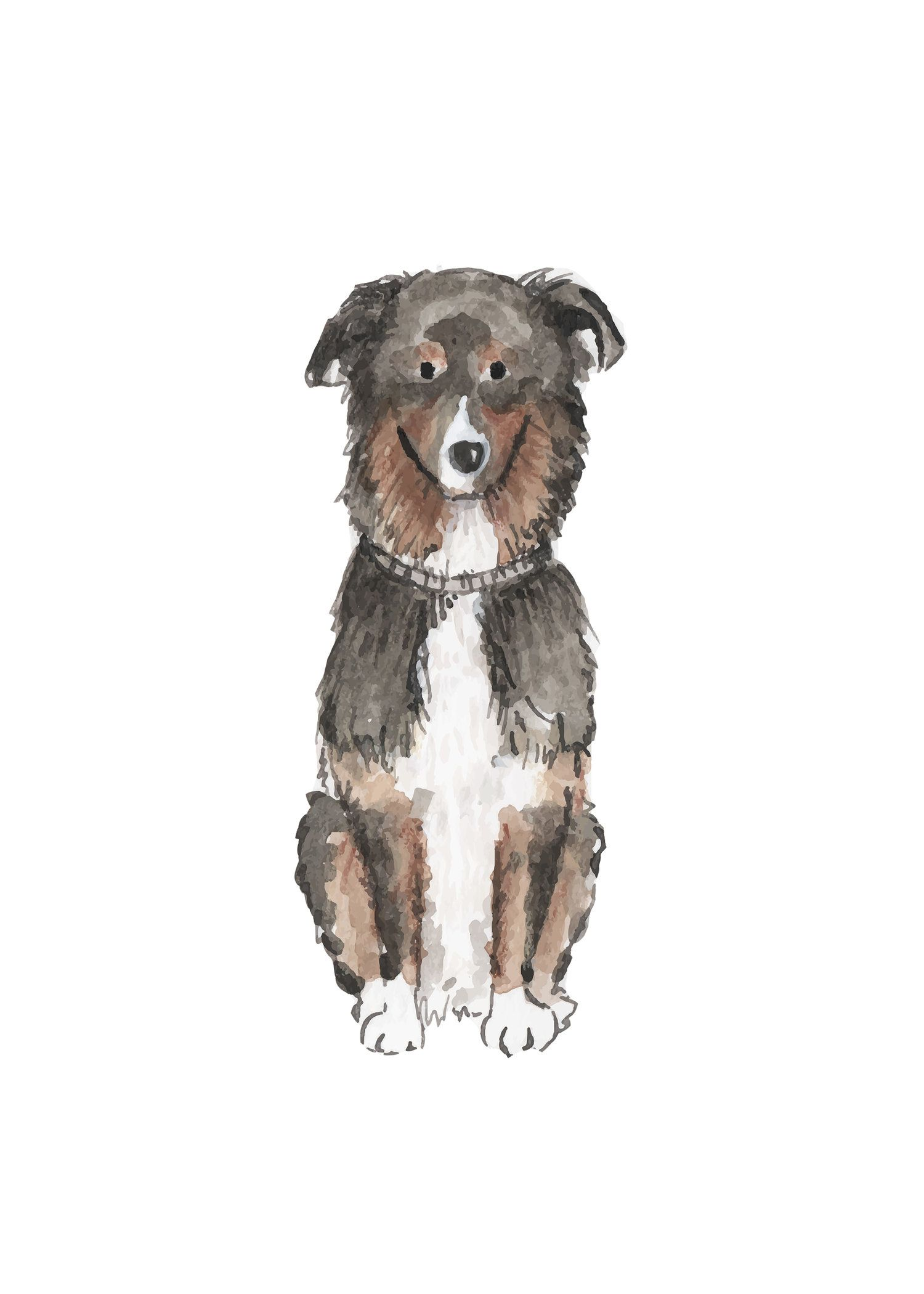 Australian Shepherd 5x7.jpg Dog print, Australian
