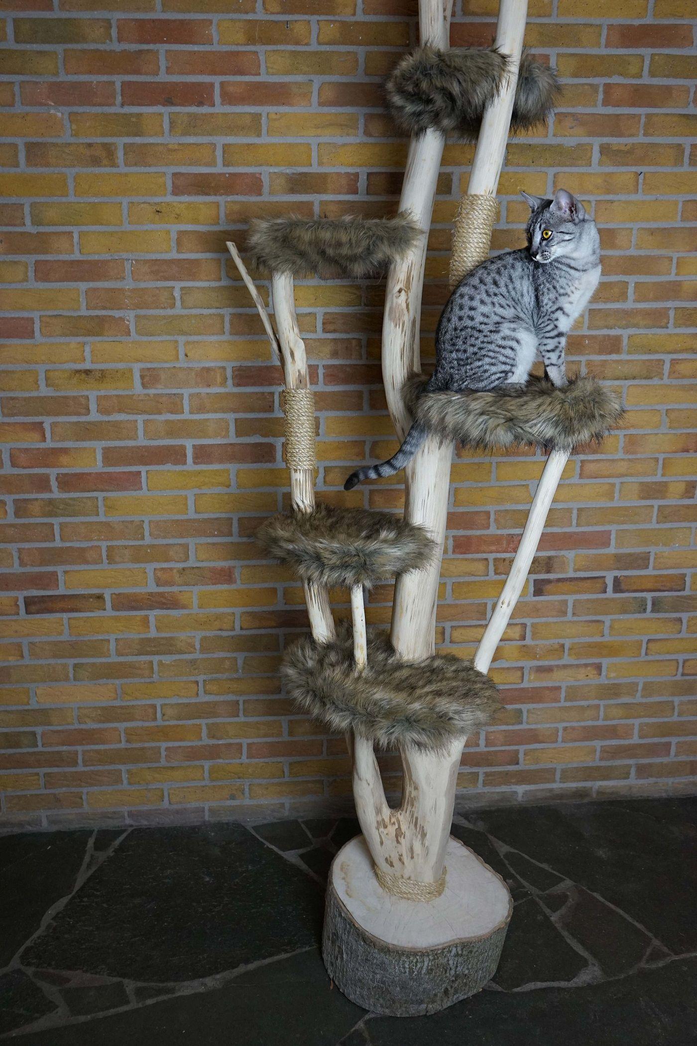Catlounge kattenmeubel