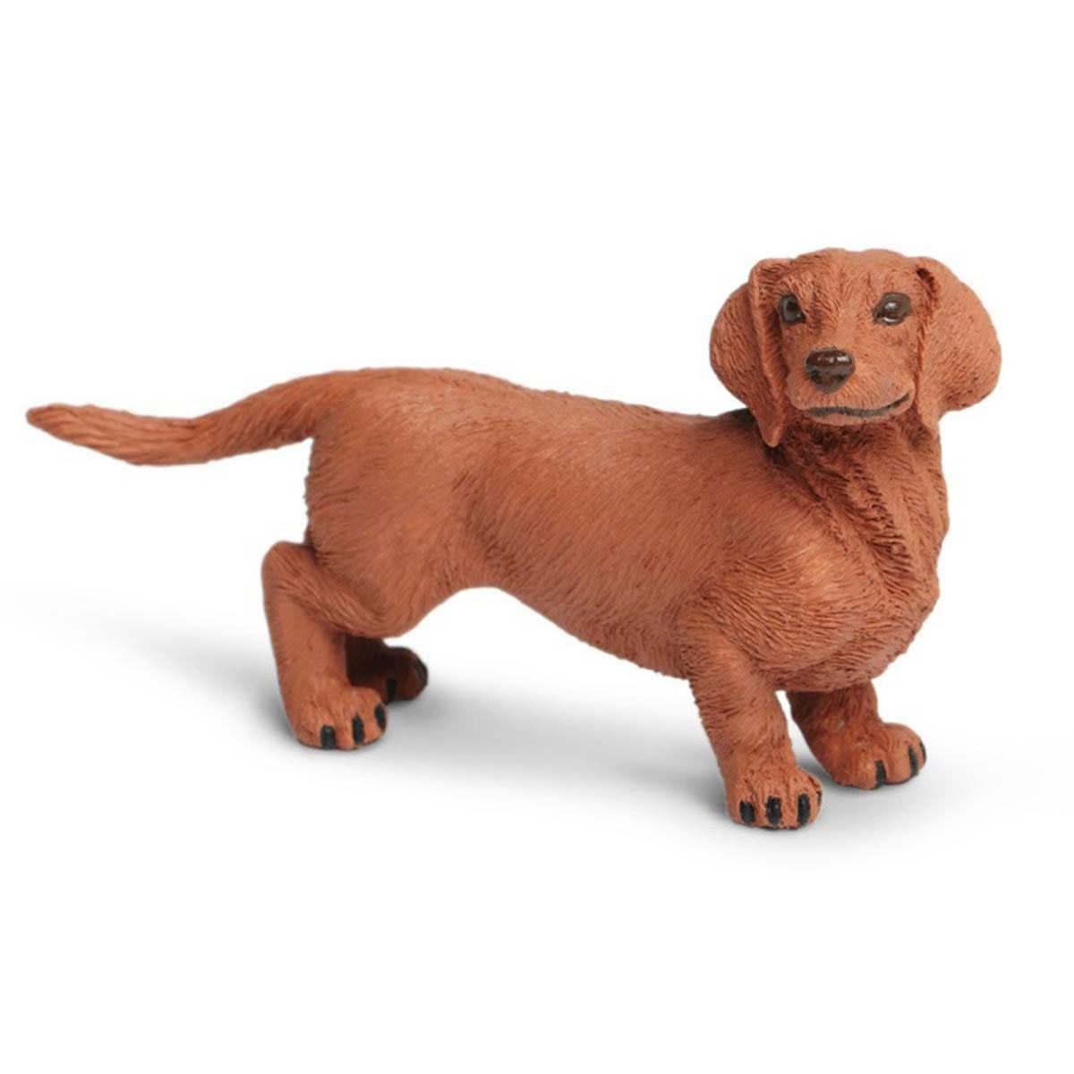 Dachshund Best In Show Dogs Figure Safari Ltd Dog Replica