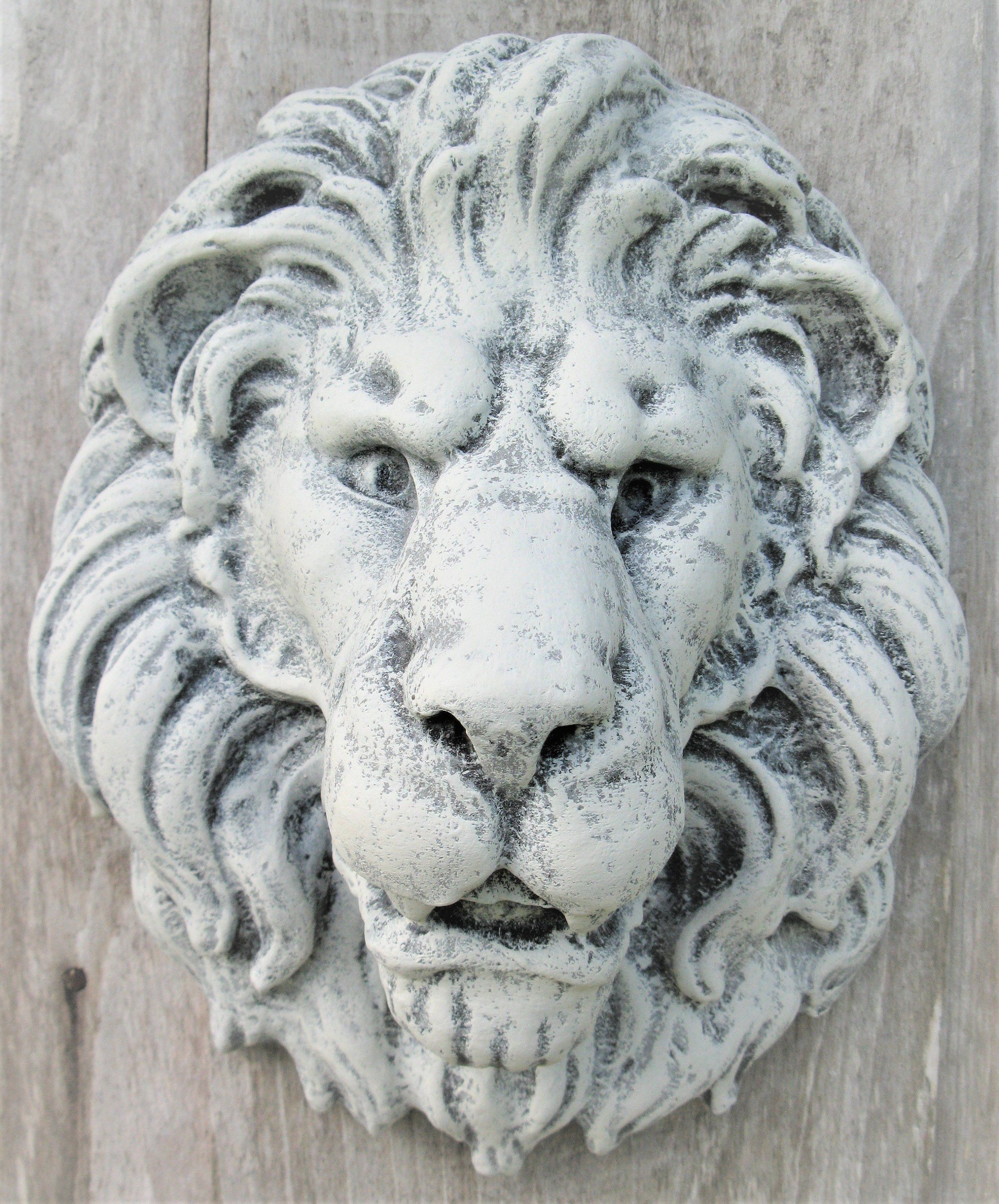 3 D Lion Head Wall Plaquefaux Stone French Country Decorlion Animal Wall Art Shabby Decor French Country Decorating