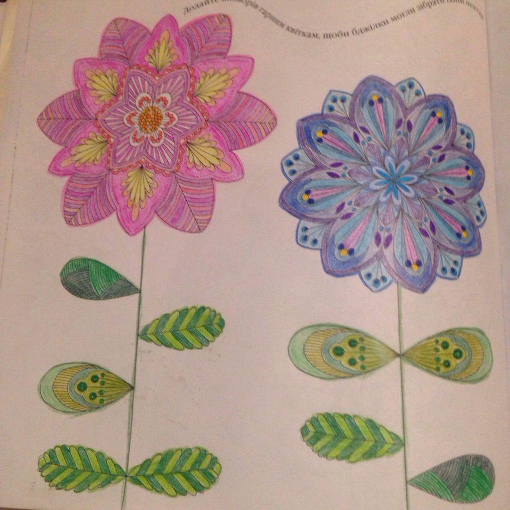 Animal Kingdom Flowers Millie Marotta