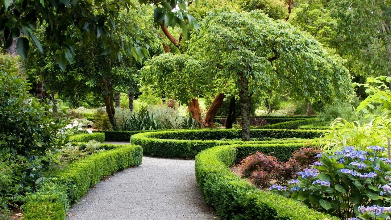 Beautifully Trimmed Garden Maze In 2020 Dutch Gardens Landscape Design Courses Landscape Design