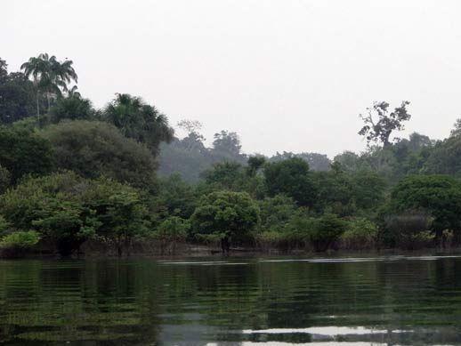 ... Receitinhas e Viagens ...: Nascer do dia na Amazonia