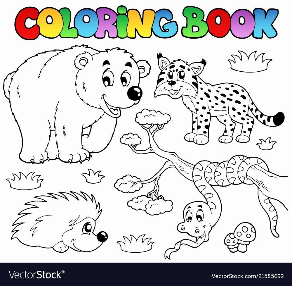 Coloring Sheet Zoo Animals Elegant Coloring Pages And Books 65 Extraordinary Forest Animals In 2020 Forest Animals Illustration Coloring Books Animal Coloring Books