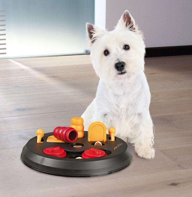 TRIXIE Pet Products Flip Board Level 2   ~ available for purchase via JoySavor http://joysavor.com/product/trixie-flip-board-level2/