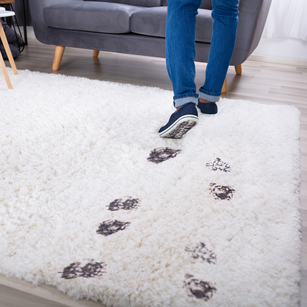 Rug Cleaning We Have The Tools Necessary To Be The Superior Area Rug Cleaner To Get Deep Into The Ru How To Clean Carpet Green Cleaning Solutions Rug Cleaner