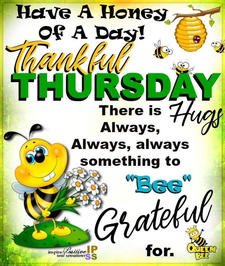 Absolutely! ThankfulThursday Good morning quotes, Bee