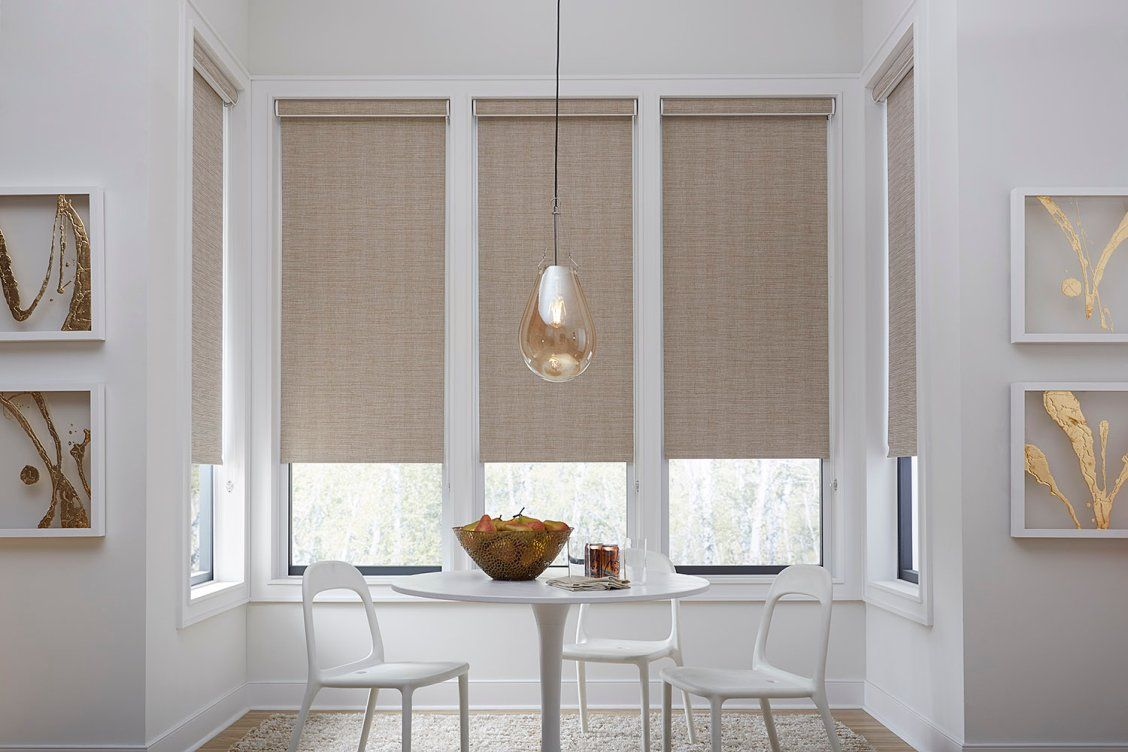 Economy Fabric Blackout Roller Shades Blinds Com Blackout Roller Shades Contemporary Window Treatments Dining Room Window Treatments