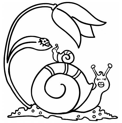snail and baby coloring picture | animal coloring activity page ...