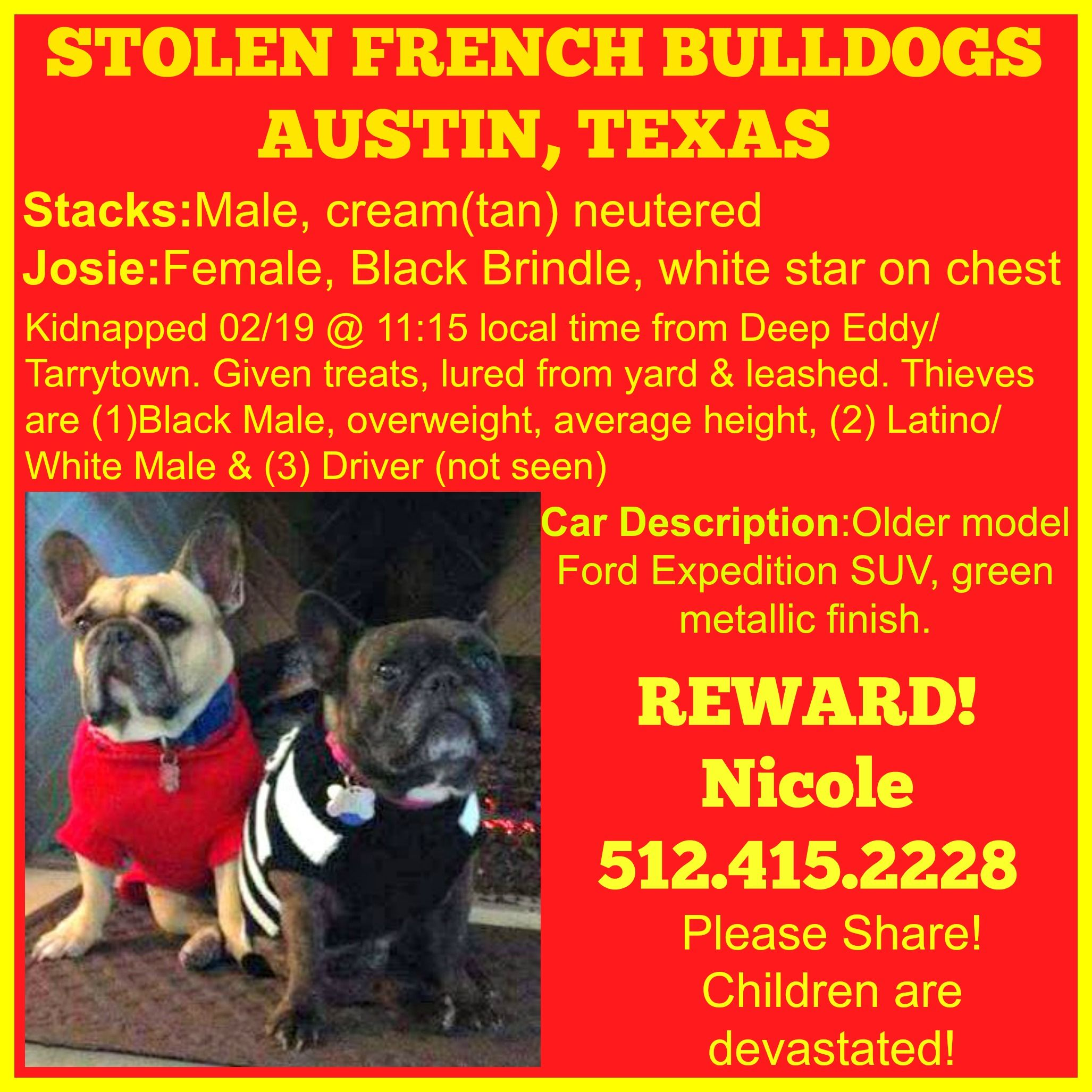 Kidnapped French Bulldogs On 2 19 Austin Texas Please Share Frenchie Frenchbulldog Austin Texas French Bulldog French Bulldog Facts I Love Dogs