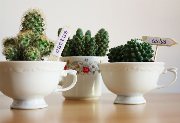 Cactus dans des tasses de récup #DIY http://www.modesettravaux.fr/cactus-tasses