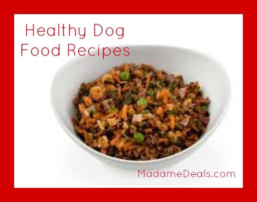 Healthy dog food recipes pet real advice gal pinterest dog healthy dog food recipes pet forumfinder Images