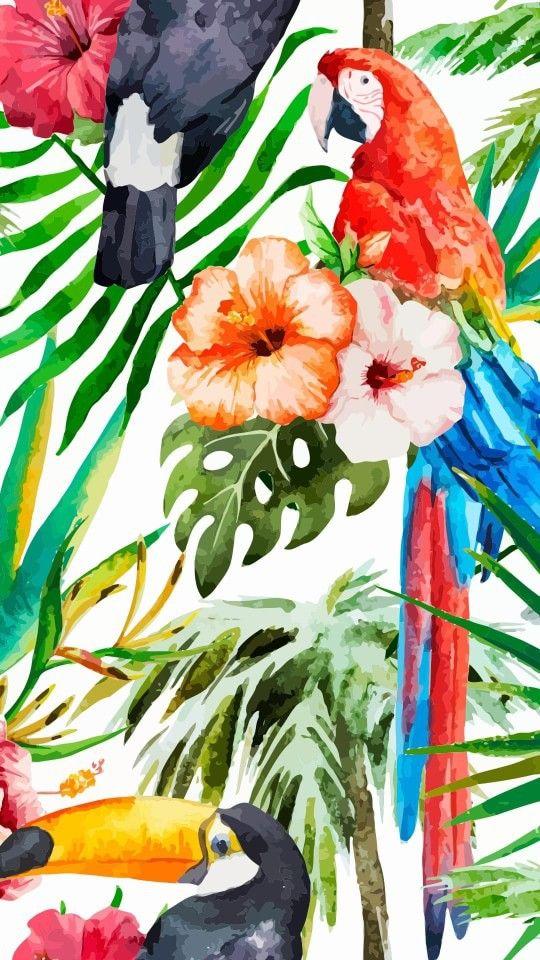 colorful, fondos, iphone, summer, tropical, tumblr ...