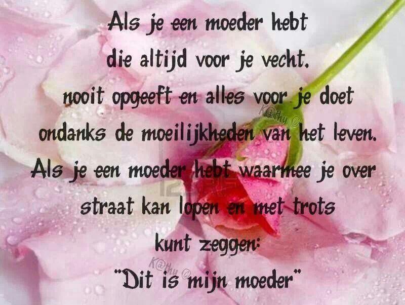 Mooi Gedicht Om Mee Te Werken Rond De Periode Van Moederdag