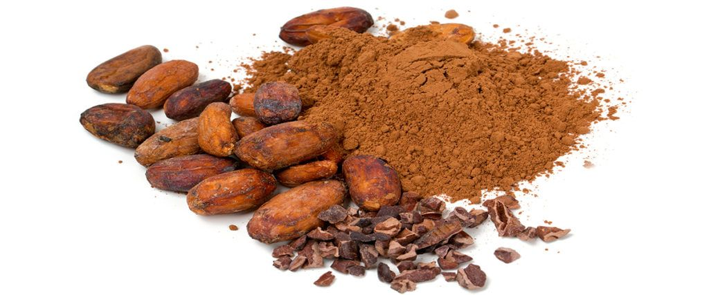 Cacao The King of the Superfoods Cacao recipes, Dog