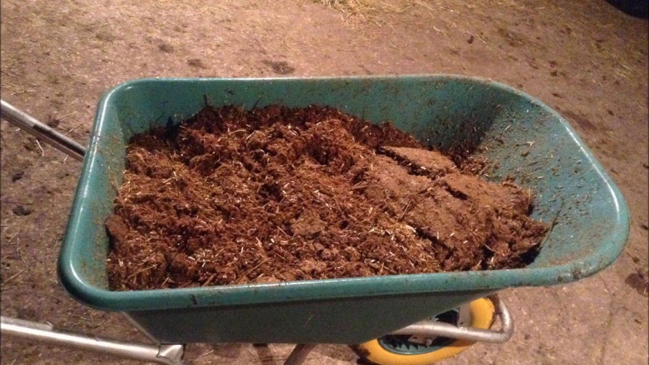 Aubiose V Pellets, Time to dig out the wet Horse bedding
