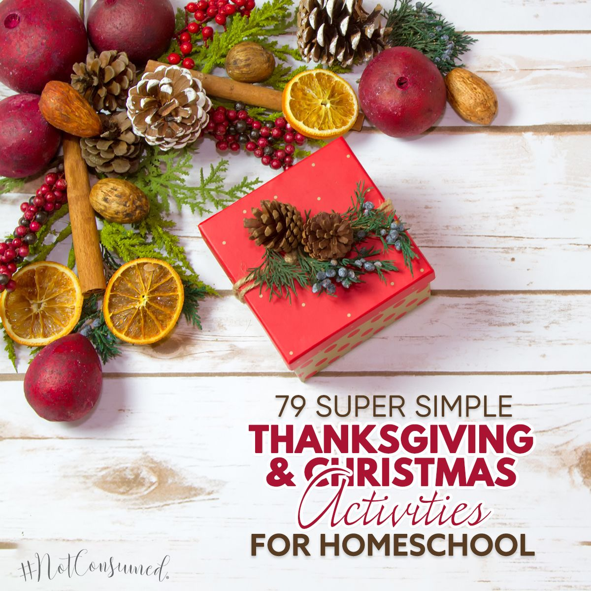 76 Thanksgiving And Christmas Activities For Homeschool