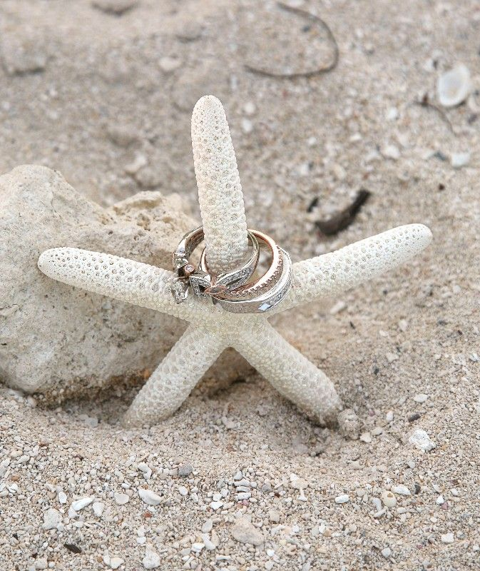starfish wedding rings Wedding Picture faves Pinterest