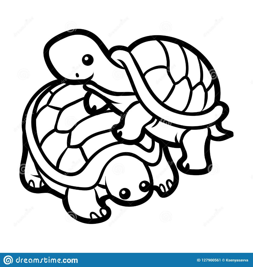Imagenes De Tortugas Kawaii Para Colorear Libro De Colores Libreta Para Dibujar Dibujo De Tortuga