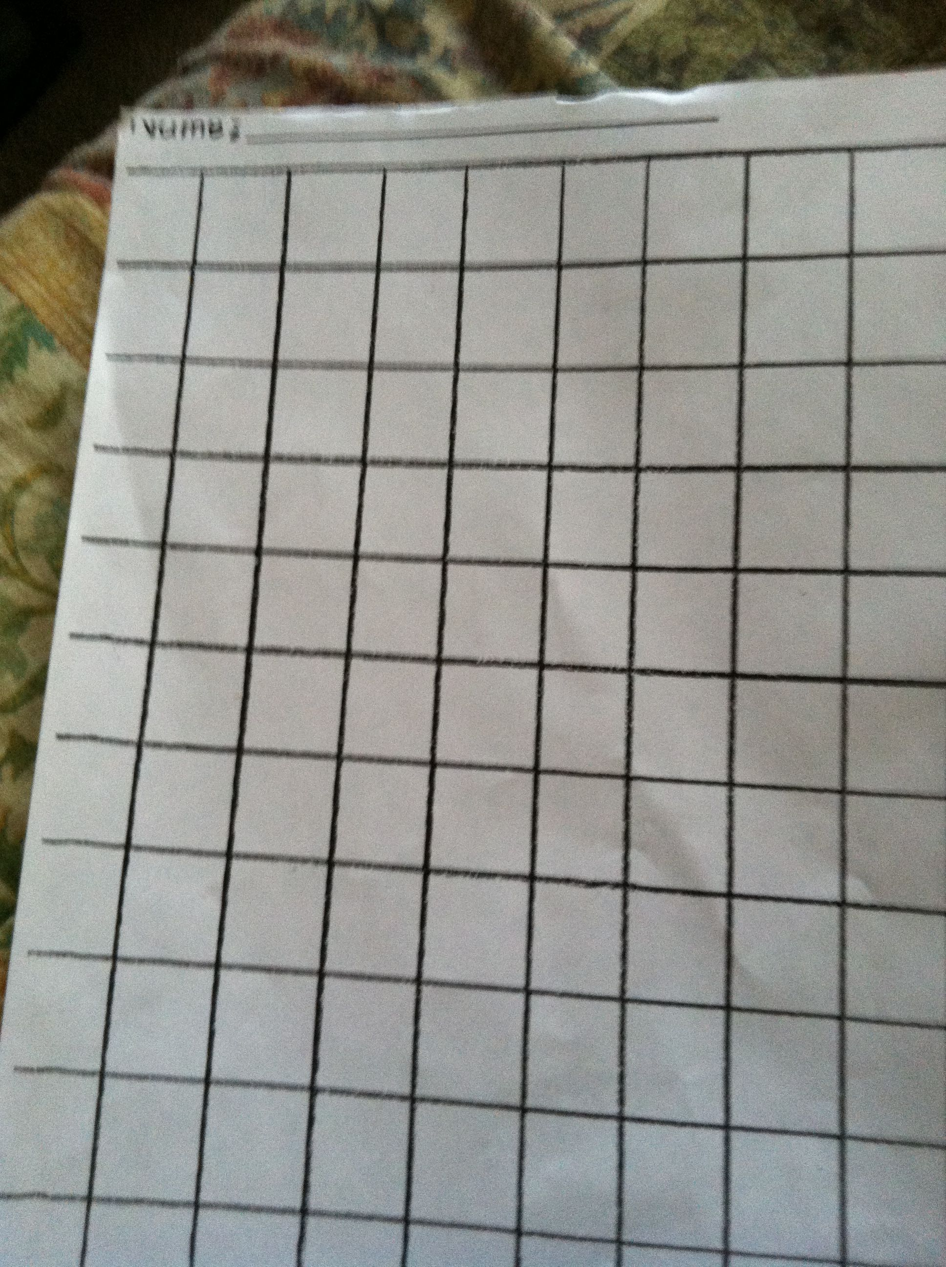 Larger Squared Graph Paper Dyspraxia