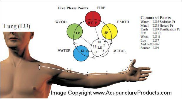 Pin en acupuntura