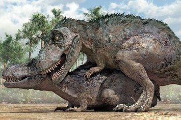 this-is-what-dinosaurs-having-sex-looked-like-2-28149-1401817780-11_big.jpg 355×236 pikseli