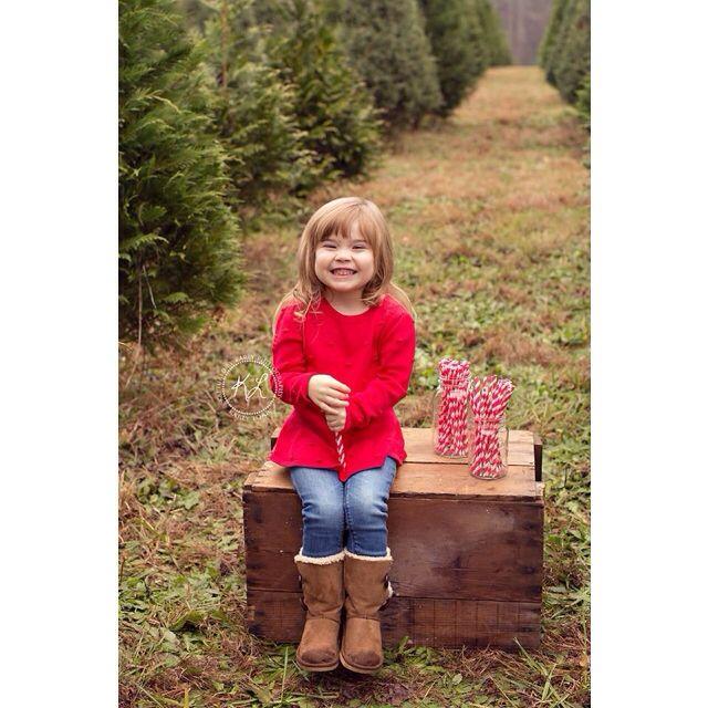 Christmas Tree Farms In North Georgia: North Georgia Photographer. Kaptured By Karly. Atlanta