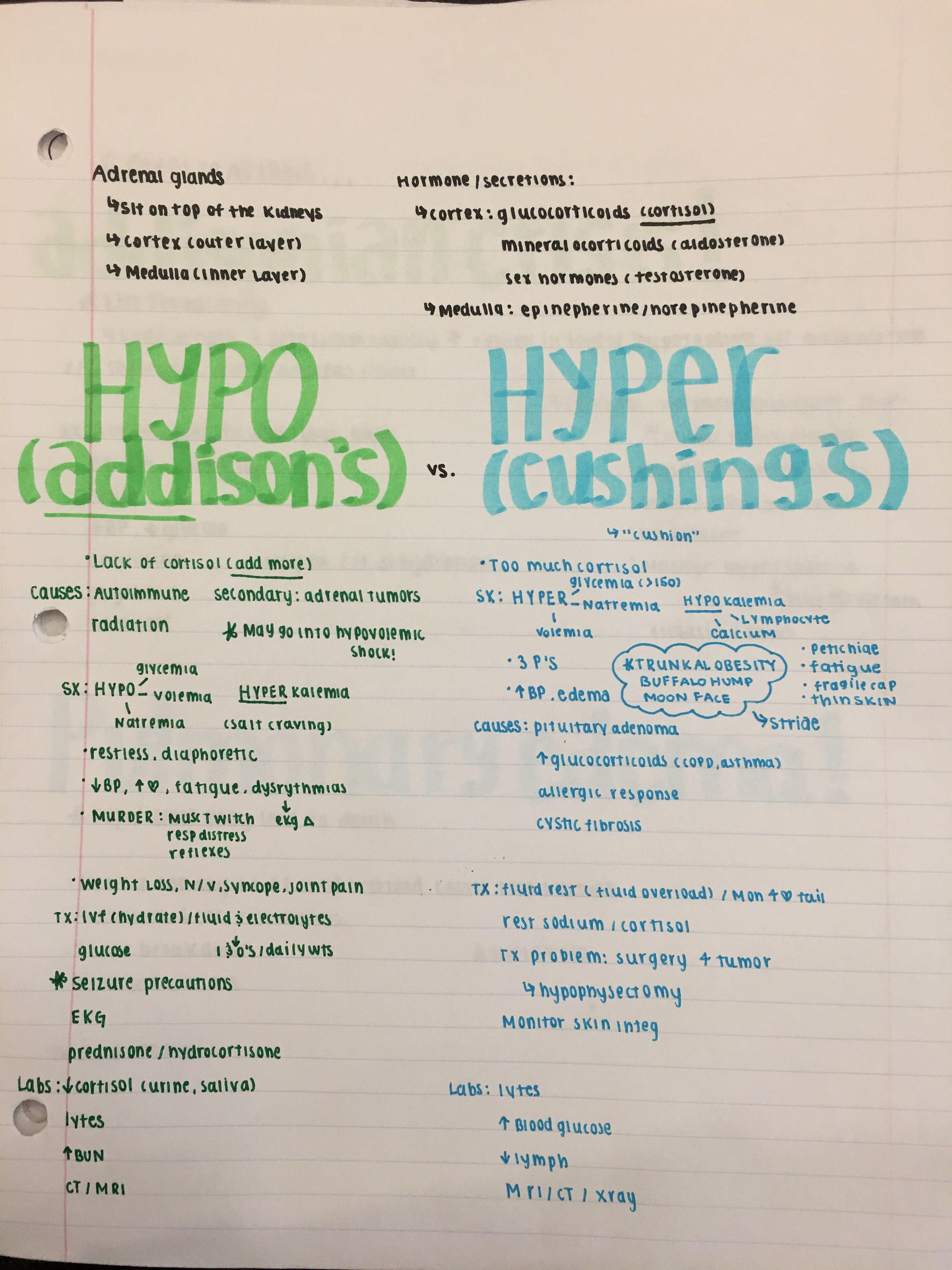 Addison's vs. Cushing's Nursing school notes, Nursing