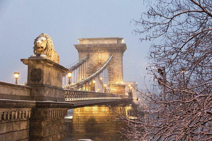 Puente De La Cadena Sobre El Río Danubio Budapest Hungría Budapest Budapest Hungría Hungría