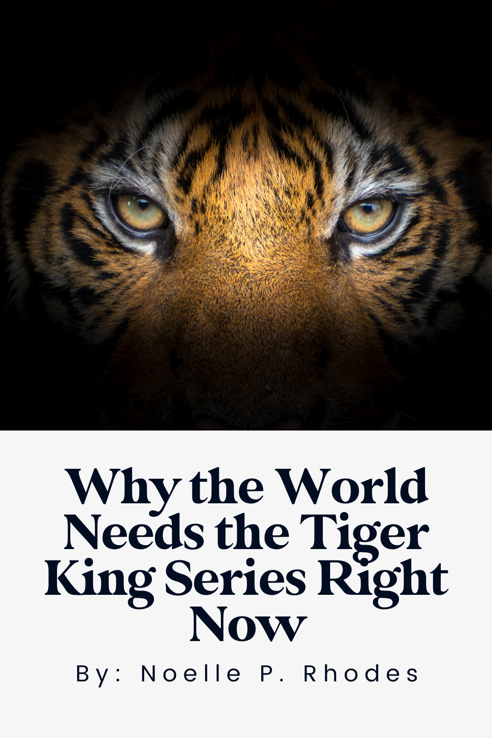 Why Netflix's Tiger King Series is getting us through the