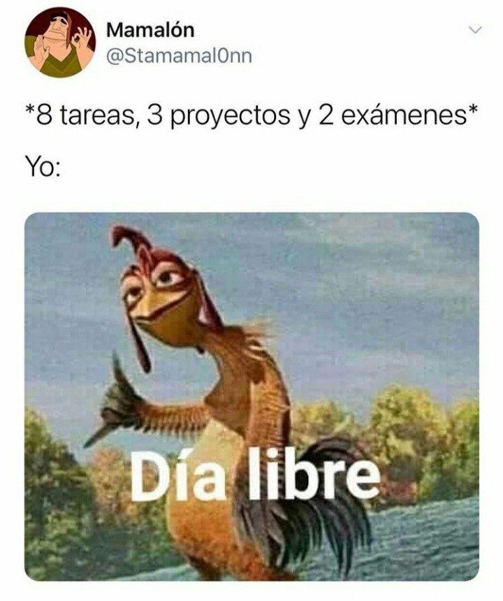 Pin By Kaze Amv On Memes In 2020 Pinterest Memes Funny Spanish Memes Super Funny Memes