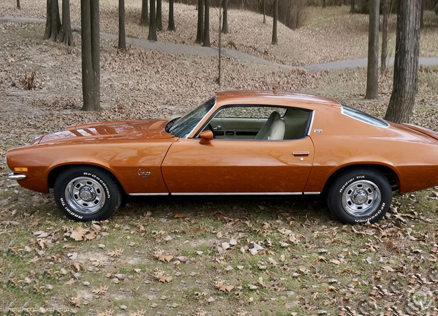 1973 Chevrolet Camaro Pictures Muscle Car Squad Camaro Chevrolet Camaro Chevrolet