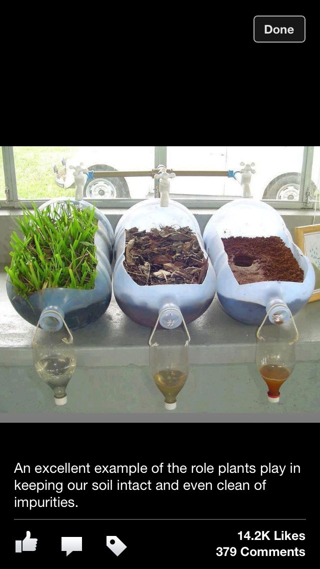 Science Soil Erosion And How Plants Help Classroom Pinterest