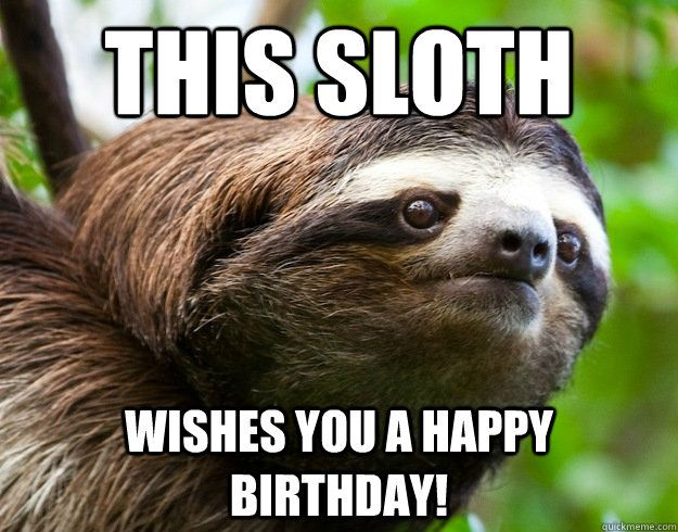 8597462bb0907efa0d965735262cc076 this sloth wishes you a happy birthday! so cute i can't stand it