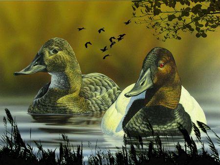 Duck Season Duck Season Artwork Art